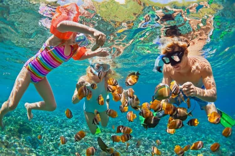 Shutterstock 695392744
